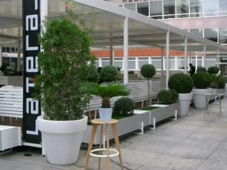 TERRAZA BAR RESTAURANTE: Bares y Clubs de estilo  de DECÓ interiorismo