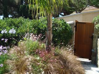 Jardin VW:  de style  par Locus-Sites Paysages