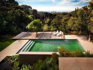 Aussenanlage in South Africa Moderne Pools von Ecologic City Garden - Paul Marie Creation Modern