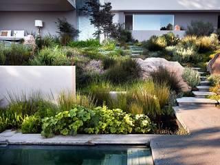 Aussenanlage in South Africa Moderner Garten von Ecologic City Garden - Paul Marie Creation Modern