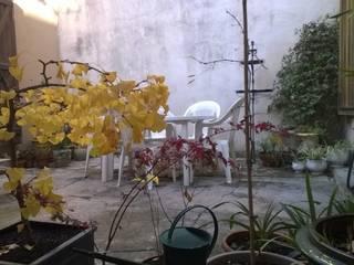 Une cour de souvenirs: Jardin de style  par Elle Jardine