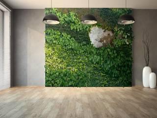 Green & Stone: Paisajismo de interiores de estilo  de Landscapers