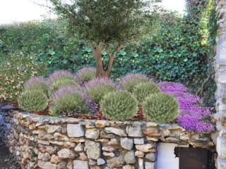 Jardines de estilo mediterraneo por homify