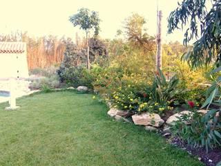 Exemples de réalisations Jardin moderne par entreprise paysagiste MORNET Moderne