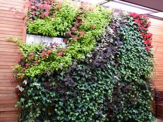 Jardín vertical Hermanos Capuchinos Bogotá D.C: Jardines de estilo  por Verde & Verde Ingenieros & Arquitectos SAS, Rústico