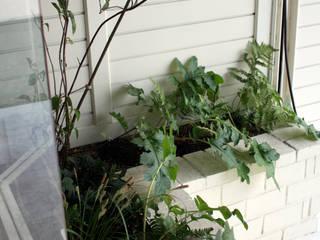 Jardins minimalistas por 小椋造園 Minimalista