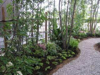 Moderner Garten von Bloom Field Modern