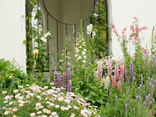 Bloom Field Modern garden