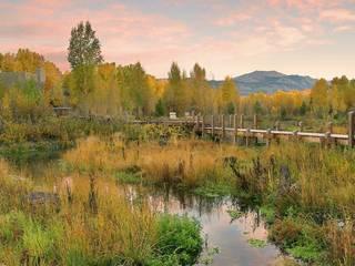 So wird die verlassene Landschaft wieder hergestellt und regeneriert Klassischer Garten von Ecologic City Garden - Paul Marie Creation Klassisch