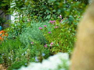Jardín Rústico con toque chic en Extremadura Landscapers Jardines de invierno de estilo mediterráneo Verde