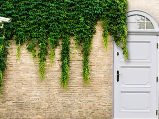 Drzwi zewnętrzne , lity dąb od Revia Meble i drzwi z litego dębu.
