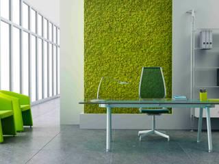 Natural Moss Spring Green: Paredes de estilo  por PANESPOL, Surface Lovers
