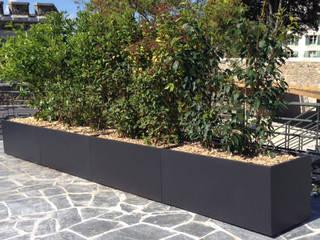 ATELIER SO GREEN Balcones y terrazasPlantas y flores Negro