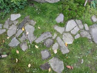 安曇野K邸 庭のクニフジ Modern style gardens