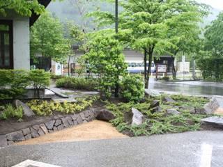 木曽K館 庭のクニフジ Modern Bahçe