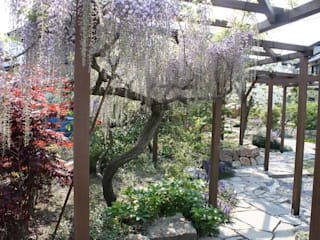 山形村K邸 庭のクニフジ Modern style gardens