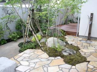 松本Km邸 庭のクニフジ Jardines de estilo moderno