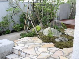 松本Km邸 庭のクニフジ Moderner Garten
