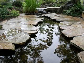 松本T邸 庭のクニフジ Modern Bahçe