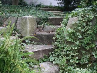 葉山M邸 庭のクニフジ Modern Bahçe