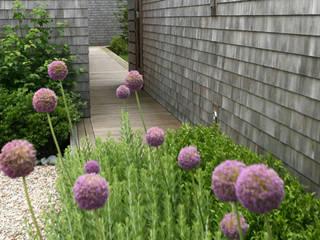 Mal anders eingerichtet. Moderner Garten von Ecologic City Garden - Paul Marie Creation Modern