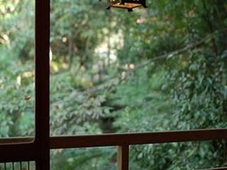 studio m+ by masato fujii Asian style garden
