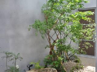 艸木/SOUMOKU Jardines de estilo ecléctico Madera Transparente