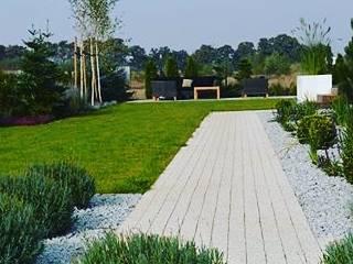 Ogród leśny w nowoczesnym wydaniu od Green Decor