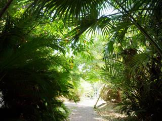 作品: 株式会社阿波三松園が手掛けた庭です。,