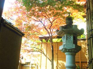 いろは回廊: 株式会社 M-Sが手掛けた庭です。,