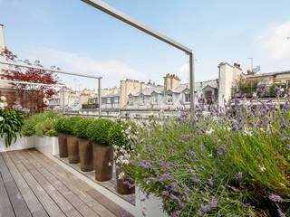 Rambuteau Terrasses des Oliviers - Paysagiste Paris Balcon, Veranda & Terrasse modernes Bois