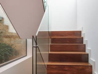 Zenaida Lima Fotografia Modern corridor, hallway & stairs
