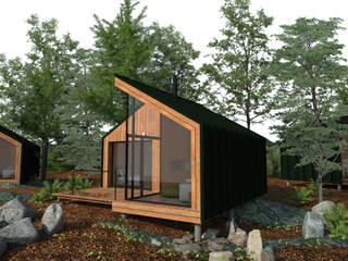 ESTUDIO BAO ARQUITECTURA Scandinavian style houses