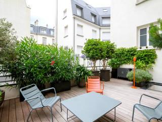Toit terrasse Miromesnil. Terrasses des Oliviers - Paysagiste Paris Balcon, Veranda & Terrasse modernes