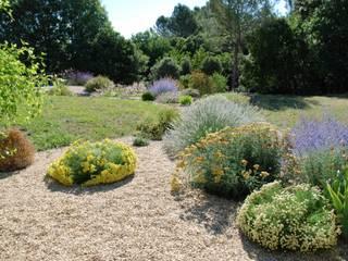 Jardin sec Jardin méditerranéen par Jean-Jacques Derboux Méditerranéen