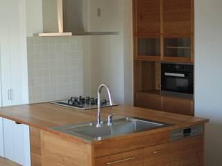 つつじヶ丘の家キッチン&キャビネット: hyakkaが手掛けたキッチンです。