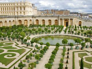 Arte topiaria: come unire Arte e Natura nel tuo Giardino:  in stile  di Dal Ben Giardini