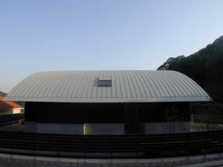 車作の家(アール屋根と吹抜けを持つ鉄骨住宅) ATS造家設計事務所 オリジナルな 家 アルミニウム/亜鉛 メタリック/シルバー