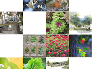 Ambiente:: Jardins ecléticos por Trifolium LAA