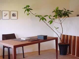 (有)ハートランド Oficinas y bibliotecas de estilo moderno Acabado en madera