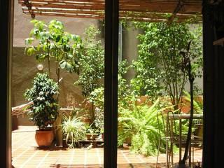 Jardins modernos por Dhena CONSTRUCCION DE JARDINES Moderno