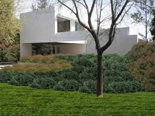 Jardín Los Sobrinos: Jardines de estilo  por Dhena CONSTRUCCION DE JARDINES,Moderno