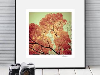 KOLOROWA FOTOGRAFIA: styl , w kategorii  zaprojektowany przez MYK STUDIO