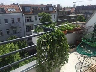 Mexican balcony:  Terrace by Kelly Marshall