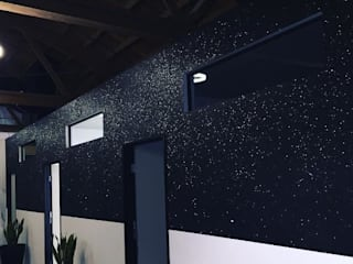 Casseopeia Mica Flake Paint by Meoded Meoded Paint and Plaster 酒吧&夜店 Black