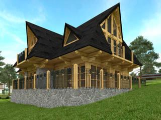 Houses by Project Harmonia Pracownia Architektoniczna, Country
