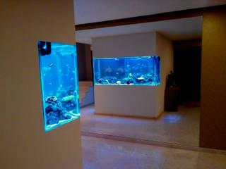تنفيذ ADn Aquarium Design