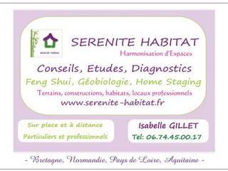 Visite conseil / Etude complète Feng Shui Habitat et Locaux professionnels:  de style  par SERENITE HABITAT