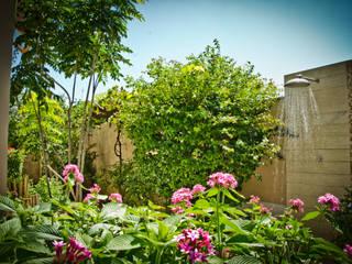 Felipe Mascarenhas Paisagismo Rustic style garden