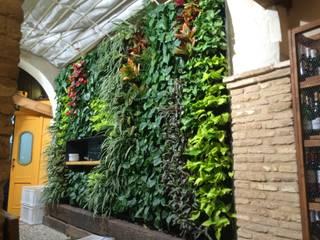 Jardín Vertical en Bar Pelayo Terapia Urbana, Diseño de jardines verticales Jardines de estilo rústico